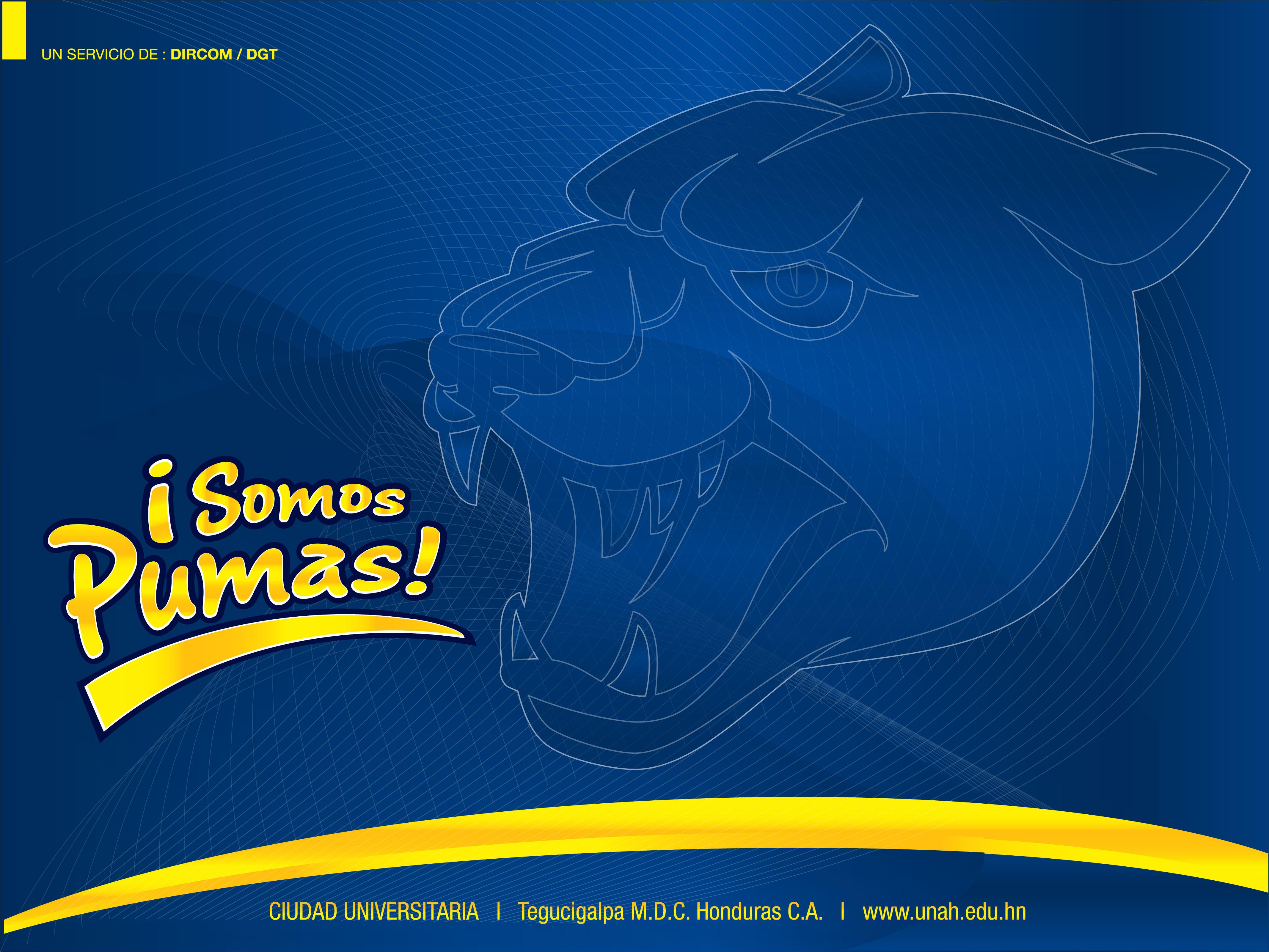 Pumas Unam Fondos De Pantalla Fondos De Pantalla